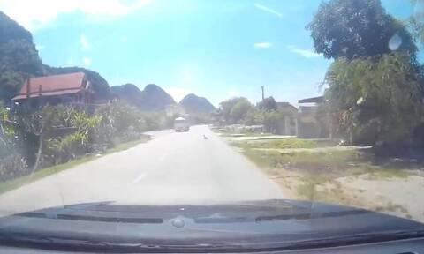 Οδηγούσε στον δρόμο και «πάγωσε» μ' αυτό που είδε μπροστά του (vid)