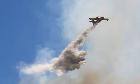Μάνη: Υπό μερικό έλεγχο η φωτιά στον Άγιο Κυπριανό