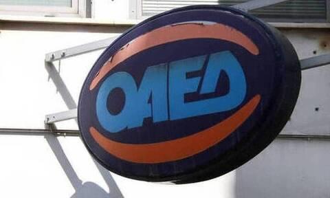 ΟΑΕΔ: Ξεκινούν οι αιτήσεις για 121 προσλήψεις - Ποιες ειδικότητες αφορά