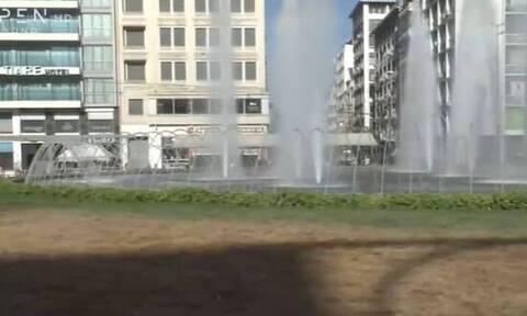 Ομόνοια: Ξεράθηκε το γκαζόν στην πλατεία και ο λόγος είναι... οι κάμπιες (video)