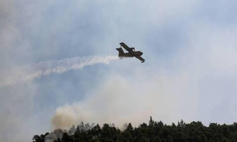 Φωτιά: Προσοχή! Σε αυτές τις περιοχές είναι πολύ υψηλός ο κίνδυνος πυρκαγιάς την Τετάρτη