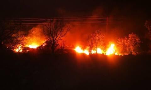 Φωτιά στη Μυτιλήνη: Στις φλόγες και η Μόρια - Καταγγελίες για εμπρησμούς