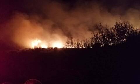 Φωτιά ΤΩΡΑ στην Κεφαλονιά: Στις φλόγες η περιοχή Φαρακλάτα