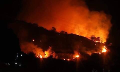 Φωτιά στη Μόρια - Δήμαρχος Μυτιλήνης: «Μία τραγική εξέλιξη εν μέσω κορονοϊού»