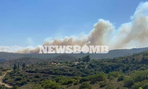 Μεγάλη φωτιά ΤΩΡΑ στη Νέα Μάκρη - Ενισχύονται οι πυροσβεστικές δυνάμεις (pics&vids)