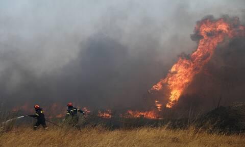 Φωτιά Ανάβυσσος: Έκτακτη σύσκεψη για την πυρκαγιά στα Καλύβια