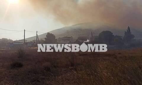 Φωτιά στα Καλύβια: Πού θα περάσουν τη νύχτα οι κάτοικοι - Ολονύχτια μάχη με τις αναζωπυρώσεις