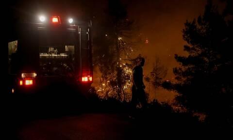 Φωτιά Ανάβυσσος: Χωρίς ενεργό μέτωπο η πυρκαγιά - Σε επιφυλακή για αναζωπυρώσεις