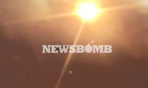 Καλύβια: Σε ύφεση η φωτιά - Μεγάλη η καταστροφή