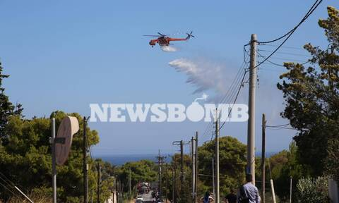 Φωτιά ΤΩΡΑ στη Ραφήνα - Εκκενώνονται σπίτια