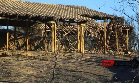 ΥΠΠΟΑ: Ο αρχαιολογικός χώρος του μυκηναϊκού νεκροταφείου στην Ηλεία δεν υπέστη φθορά από τη φωτιά