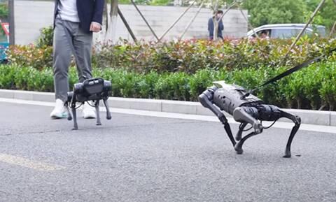 Τρόμος: Tα ρομπότ που θα αλλάξουν τη ζωή μας