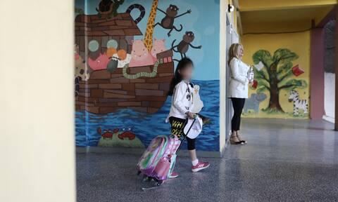 Γώγος - Άνοιγμα σχολείων: Σε ποσοστό 95% προστατεύει η μάσκα -Τι θα συμβεί αν υπάρξουν κρούσματα