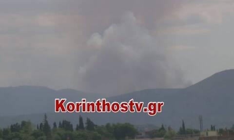 Μεγάλη φωτιά στην Κορινθία - Ενισχύονται οι πυροσβεστικές δυνάμεις