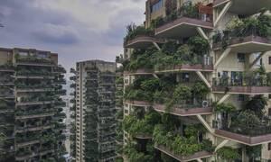 Όταν τα φυτά... ξεπηδούν από τις πολυκατοικίες (pics)