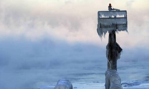 Μεγάλη ανακάλυψη: Αρκούδα της εποχής των παγετώνων βρέθηκε διατηρημένη στην Αρκτική