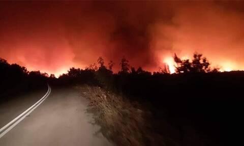Φωτιά στον Έβρο: Ολονύχτια μάχη με τις φλόγες σε Μελία και Νίψα