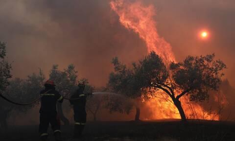 Φωτιά ΤΩΡΑ στην Φιλιππιάδα Πρέβεζας - Καίει δάσος
