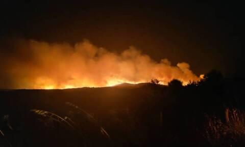 Σε εξέλιξη η φωτιά στον Έβρο: Ισχυροί άνεμοι στην περιοχή - Εφιαλτική νύχτα για τους κατοίκους