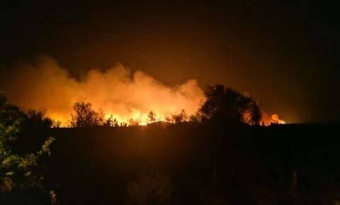Στον Έβρο κλιμάκιο της Διεύθυνσης Αντιμετώπισης Εγκλημάτων Εμπρησμού – 15 φωτιές σε 48 ώρες