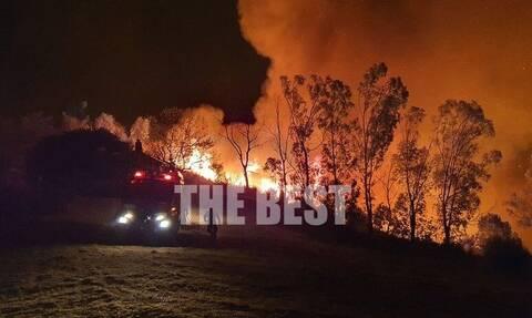 Φωτιά στην Πάτρα: Νύχτα - «θρίλερ» στα Συχαινά - Απειλήθηκαν σπίτια