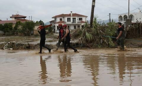 Κακοκαιρία «Ιανός»: Κλειστά τα σχολεία σε Χαλκίδα και Δήμο Διρφύων - Μεσσαπίων