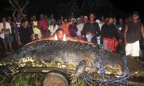 Αυτός είναι ο μεγαλύτερος κροκόδειλος στον κόσμο!