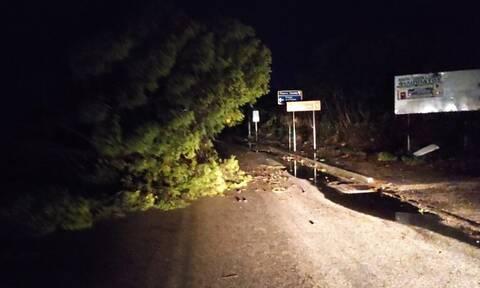 Κακοκαιρία «Ιανός»: Επείγουσα ανακοίνωση του Δήμου Αργοστολίου για τις ζημιές