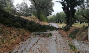 Κυκλώνας Ιανός: Προσοχή! Πότε θα σαρώσουν έντονα φαινόμενα την Αττική
