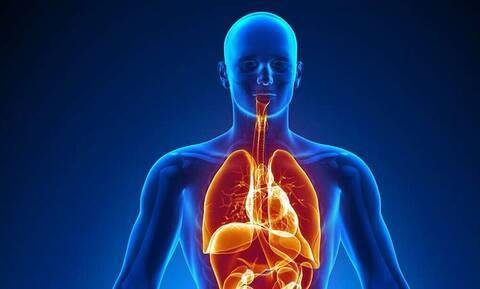 Αυτό είναι το μοναδικό σημείο στο σώμα μας που δεν περνάει αίμα