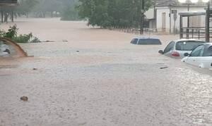 Κυκλώνας «Ιανός» - Συγκλονιστική μαρτυρία για τη νεκρή: Την άκουγα να φωνάζει βοήθεια (vid)