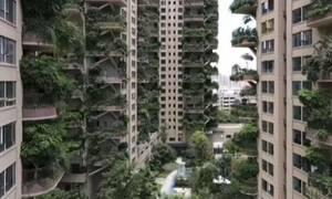 Οι κρεμαστοί κήποι της Κίνας: Διαφημίστηκαν σαν παράδεισος αλλά κατέληξαν… κόλαση – Δείτε γιατί