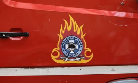 Φωτιά ΤΩΡΑ στην Καβησό των Φερών Εβρου - Καίει δασική έκταση