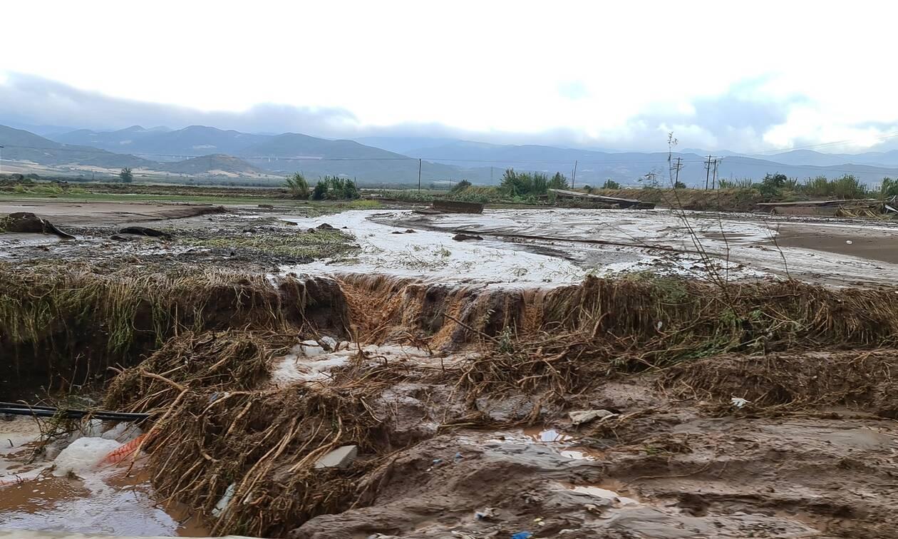 Κακοκαιρία Ιανός: Η Καρδίτσα μετρά τις πληγές της - 5.000 πλημμυρισμένα σπίτια και 896 διασώσεις
