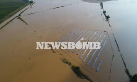 «Ιανός» - Καρδίτσα: Οικονομική καταστροφή - Σε απόγνωση οι βαμβακοπαραγωγοί (pics)