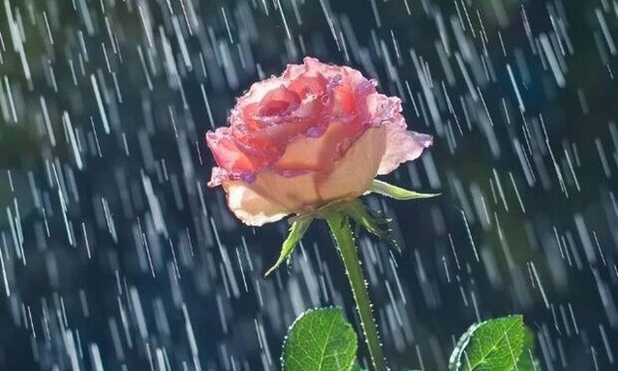 Σήμερα 25/09/20: Είναι η μέρα βροχερή...