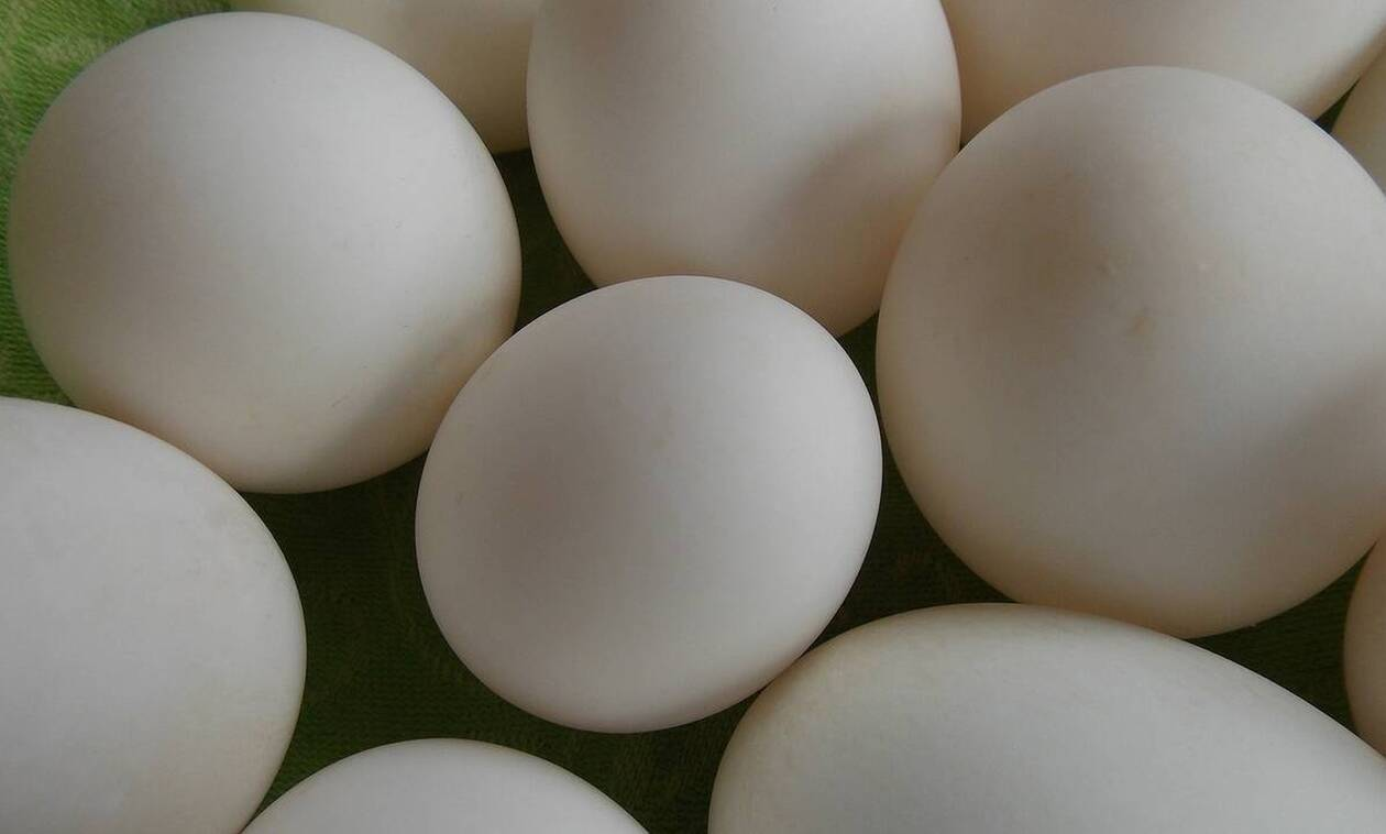 Αγόρασε αυγά από σούπερ μάρκετ - «Τρελάθηκε» μ' αυτό που βρήκε (vid)