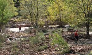 Μουζάκι: Βρέθηκε πτώμα γυναίκας στην Καρδίτσα - Δείτε εικόνα από το σημείο