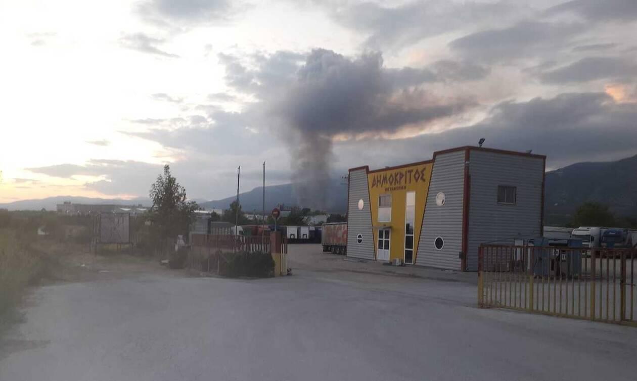 Ξάνθη: Φωτιά κοντά στο πεδίο βολής στο Πετροχώρι