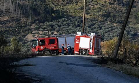 Φωτιά στη Λαυρεωτική: Υπό μερικό έλεγχο η πυρκαγιά στο Βρωμοπούσι