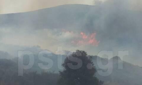 Μεγάλη φωτιά ΤΩΡΑ στην Πάρο - Δείτε τις προσπάθειες των πυροσβεστών (pics&vid)