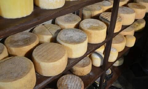 Η Ελλάδα έχει τα κορυφαία τυριά και πολλά είναι άγνωστα!