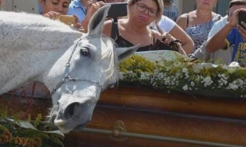 Ανατριχίλα: Άλογο σπαράζει στην κηδεία του αφεντικού του! (vid)