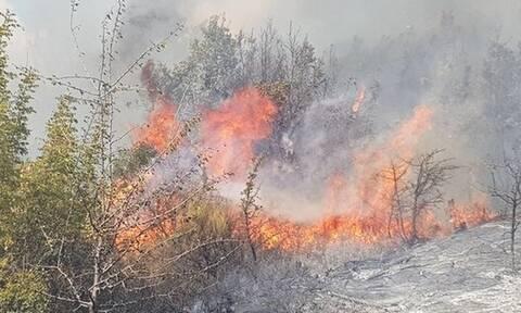 Φωτιά στον Έβρο: Δύο τα ενεργά μέτωπα - Ενισχυμένες οι δυνάμεις της Πυροσβεστικής