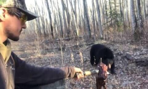 Βλέπει μια πεινασμένη αρκούδα και αυτό που κάνει δεν έχει προηγούμενο!