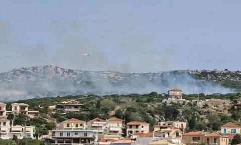 Φωτιά Πύλος: Κοντά σε σπίτια οι φλόγες - Συγκλονιστικές εικόνες από το πύρινο μέτωπο (pic+vid)