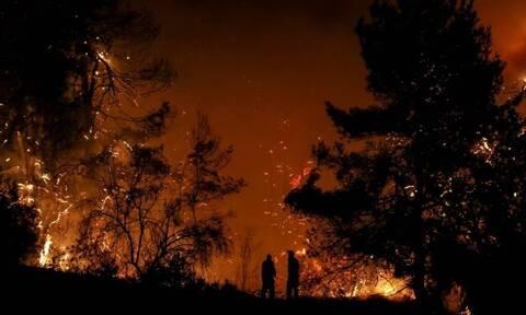 Πύρινος εφιάλτης στην Ζάκυνθο - Ολονύχτια μάχη με τις φλόγες