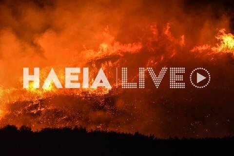 Φωτιά ΤΩΡΑ στην Ηλεία (pics+vid)