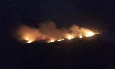 Φωτιά ΤΩΡΑ στη Ζάκυνθο: Ολονύχτια μάχη με τις φλόγες πάνω από το Ναυάγιο
