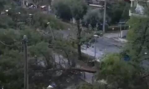 Κακοκαιρία: Καταστροφές στο Ν. Ηράκλειο -  Πτώση δέντρου σε γραμμή του ΗΣΑΠ (vid)
